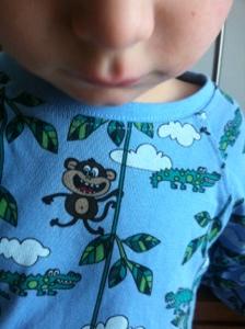 Naše domácí opička ;-)