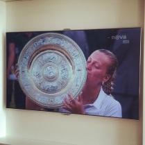 Petra znovu vyhrála Wimbledon ;-)