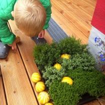 Junior pomáhá aranžovat dýně