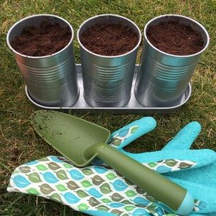 Letos jsme jako první zasadili semínka bylinek a pěstujeme doma.